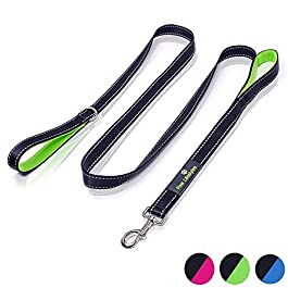 Paw Lifestyles Heavy Duty Dog Leash – 2 Handles – Padded Traffic Handle for Extra Control, 7ft Long – Perfect Leashes for Medium to Large Dogs