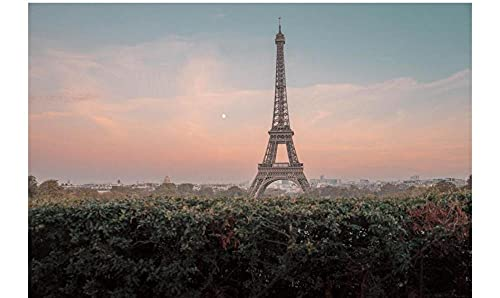 Eiffel Tower Landscape 5D DIY Diamond Painting Kits Full Drill Diamond Art Crystal Embroidery Painting for Adults Home Wall Decor
