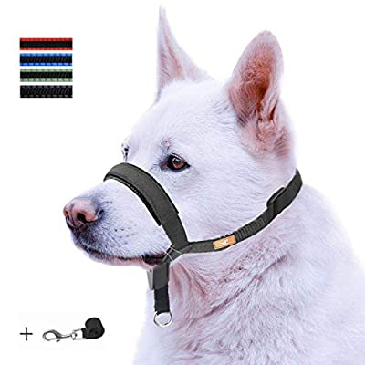 wintchuk Dog Head Collar with Padded Leather, Head Harness Stops Dog Pulling, Head Leash (L, Black)