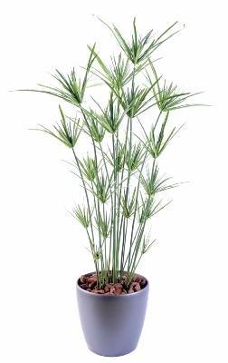 Generique - Papyrus 110Cm Pvc - Plante Artificielle Extérieur - Vert
