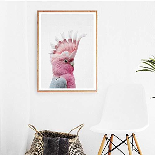 Terilizi Print cacadu Australische vogel poster muurkunst canvas schilderij Australische dier modern fotografie afbeelding kinderkamer decor-30X40cm niet-ingelijst