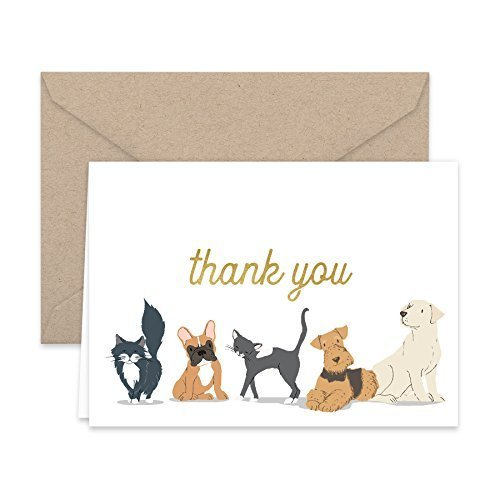 Paper Frenzy Dog and Cat Thank You Note Cards and Kraft Envelopes - 25 pack