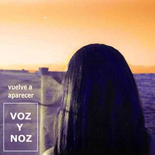 Voz y Noz