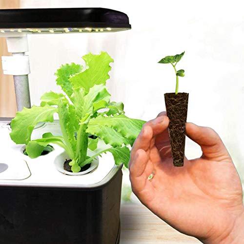 HANDAN Esponjas compatibles con Aerogardens paquete 520 Compatible con las cápsulas Aerogarden Reemplazos de vainas de semillas compatibles para todos los kits de cultivo de cualquier cosa res