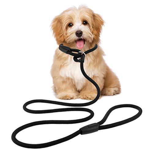 Winkwinky Hundeleine, 150 cm, Nylon, verstellbar, langlebig, für kleine und mittelgroße Hunde, Rot (Schwarz)