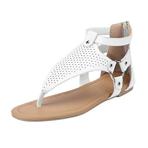 Sandali Da Donna Con Punta A Punta In Pizzo Sandali Da Donna Intagliati Sandali Piatti Con Cerniera Posteriore Scarpe Oversize