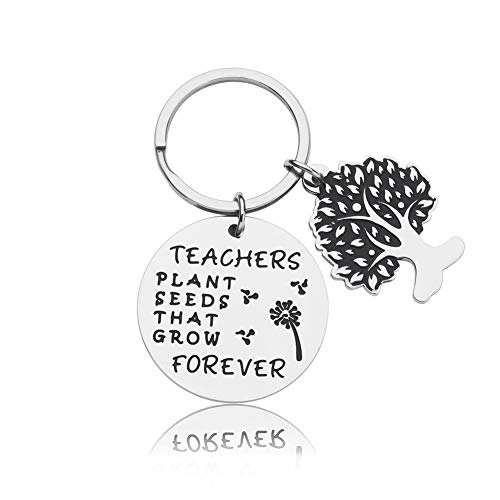 Thank You Gifts Teacher Appreciation Gifts Keychain from Student Birthday Christmas Thanksgiving Day Teachers Day Graduation Gift for Women Men Her Him Teacher Plant Seeds That Grow Forever