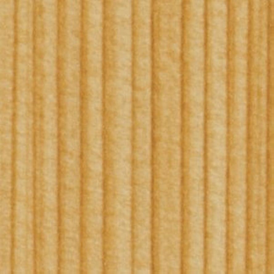 オーナーキウイ妻壁紙 クロス のり付き 【CC-TH9191】 JQ5 サンゲツ FAITH 和 1m単位