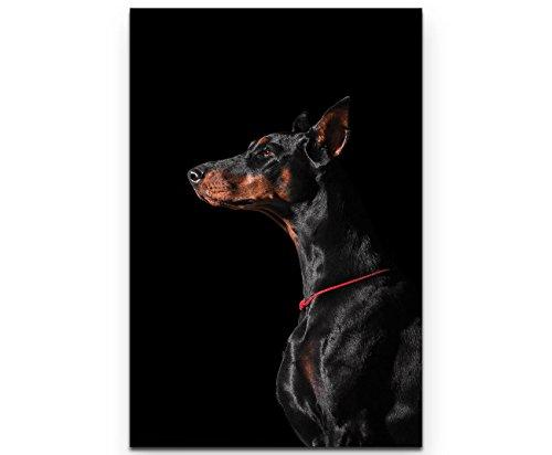 Paul Sinus Art Leinwandbilder | Bilder Leinwand 90x60cm Portrait eines Dobermann – Seitenansicht