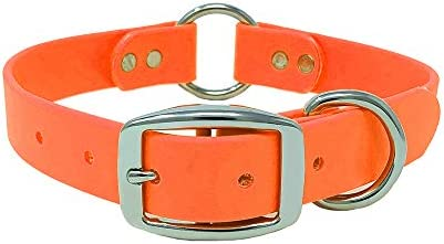 Orange Waterproof Dog Collar with Heavy Duty Center Ring Custom Fit Vinyl coated webbing Water product image