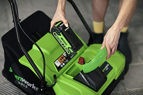 Greenworks Battery Dethatcher G40DT35 (Li-Ion 40V 35cm Working Width 3600 rpm 20 Steel Springs with 76 mm Depth 20l Collecting Bag without Battery and Charger)