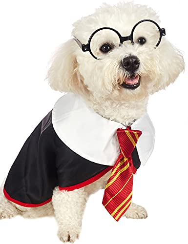 Wizard dog costume with tie and glasses