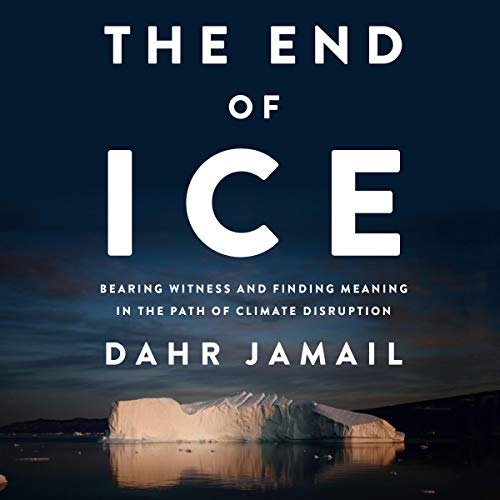 Page de couverture de The End of Ice