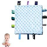 Baby Tags Security Blankets - Baby Soothing Plush Blanket with Colorful Tags, Square Sensory Toys, 10 x 10 inches, for 0-12 Months Babies(Blue)