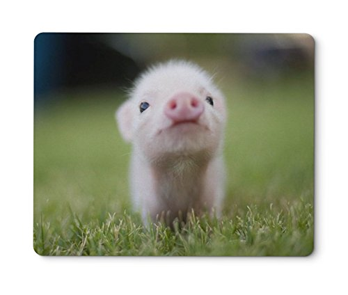 Mouse Pads Pig Gaming Customized Rectangle Non-Slip Rubber Mousepad Gaming Mouse Pad (240 2003mm) (mouse -04)
