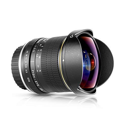 Neewer 8mm F 3.5 Ultra Grandangolare Rettangolare Obiettivo Fisheye Messa a Fuoco Manuale per DSLR APS-C Canon EOS 77D 80D Rebel T7 T7i T6i T6s T6 SL2 SL3 Fotocamere DSLR