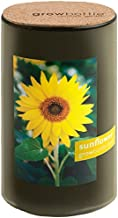 Potting Shed Creations Sunflower Grow Bottle Demi