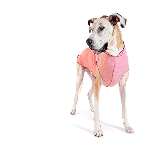 Gold Paw Sun Shield Dog Tee – T-Shirt for Canines – UV Protection, Pet Anxiety Relief, Wound Care – Protects Against Foxtails, Aids Alopecia - Machine Washable, All Season – Size 2 – Coral