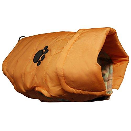 Vital Pet - Gilet imperméable - Chien (66 cm) (Orange)
