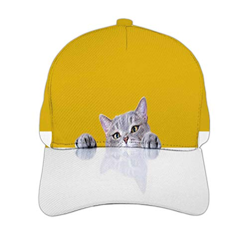 Bigeyed Naughty Obese cat Looking at The Target.British sort Hair cat.Turkey Middle East,Adjustable Snapback Hat for Men