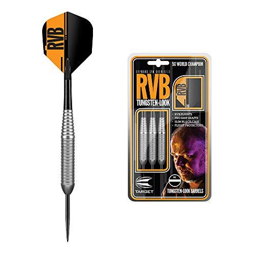 Target Darts Raymond Van Barneveld RVB 21G Silber Wolframoptik Messing Steeldarts Dartpfeile-Set