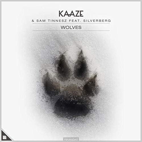 Kaaze & Sam Tinnesz feat. Silverberg