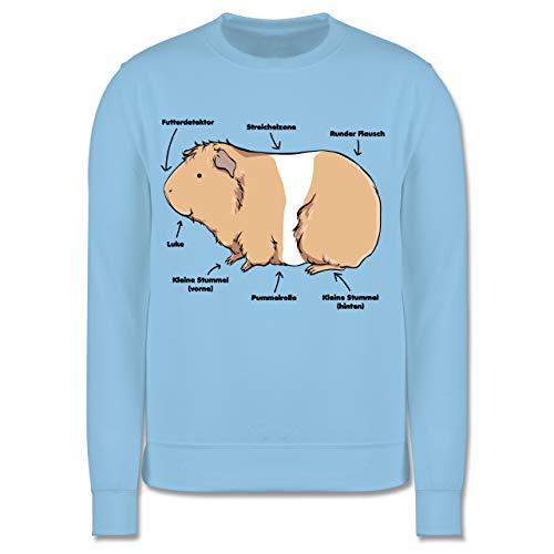 Shirtracer Tiermotive Kind - Meerschwein Anatomie - 116 (5/6 Jahre) - Hellblau - Kinder Pullover meerschweinchen - JH030K - Kinder Pullover