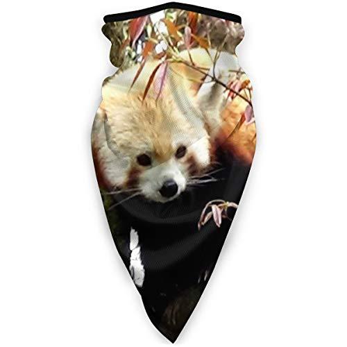 BJAMAJ Masque de sport Himalaya Rouge Panda Extérieur Visage Bouche Masque Coupe-Vent Masque de Ski Masque Bouclier Écharpe Bandana Hommes Femme