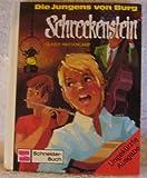 Die Jungens von Burg Schreckenstein. Bd. 1 (Ab 10 J.)