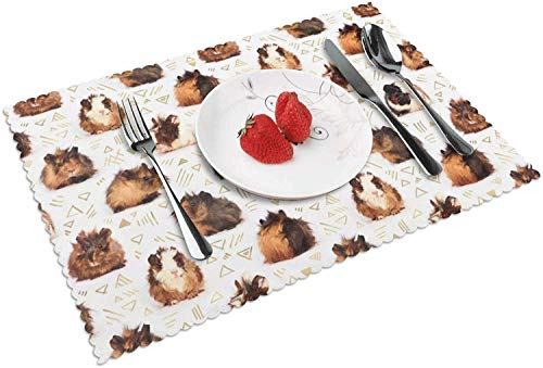 Guinea Pigs Placemats Set of 4 for Kitchen Table Woven Placemats for Dining Table