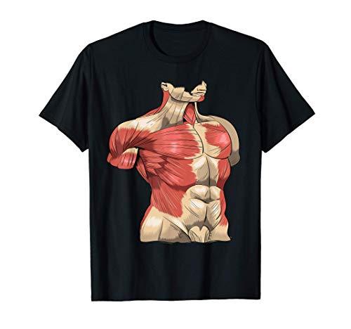 Anatomía humana Músculos Abs Pectorales Camiseta