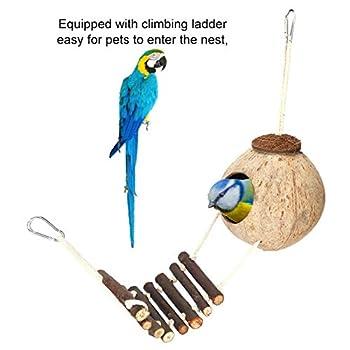 01 Bird Coconut House, Bird Hideaway Toy Small Pet Supplies Coconut Shell House pour Hamster pour Animal de Compagnie pour Perroquet