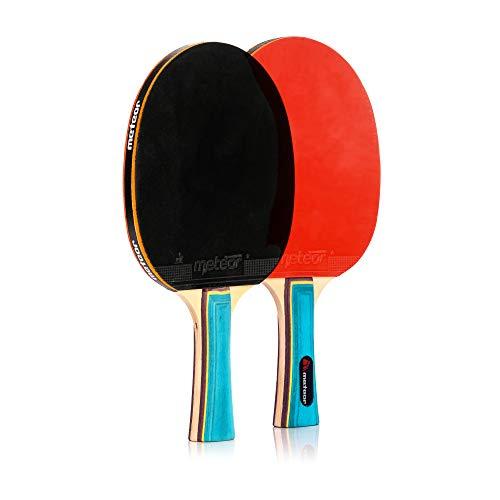 Pala Tenis de Mesa Ideal para Principiantes y avanzados - la Raqueta de Tenis de Mesa para niños y Adultos - Raqueta Mesa Ping Pong para Entrenamiento y Partidos (1 Estrella)