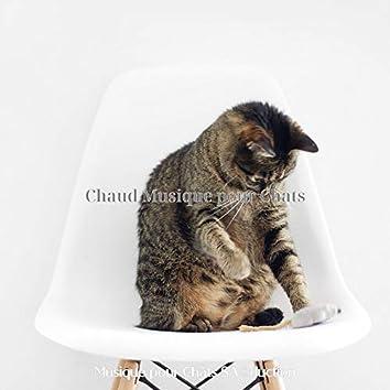 Chaud Musique pour Chats