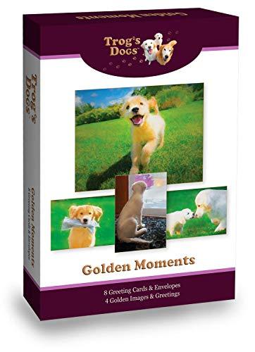 Golden Retriever Greeting Cards: Golden Moments