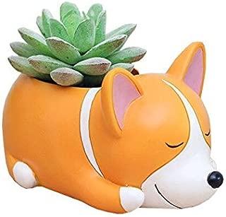 Youfui Cute Dog Flowerpot Resin Succulent Planter Desk Mini Ornament (Crogi Dog)