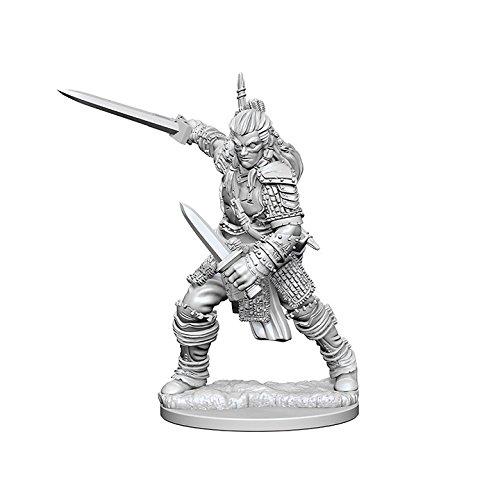 Pathfinder: Deep Cuts Unpainted Miniatures: Human Male Fighter