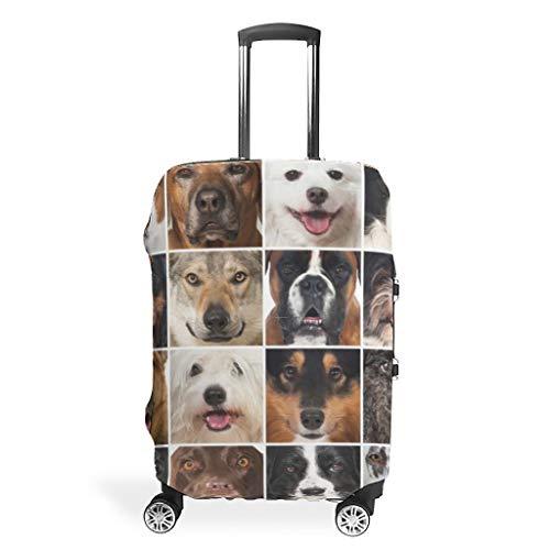 RNGIAN - Funda Protectora para Maleta de Perro, diseño de Animales