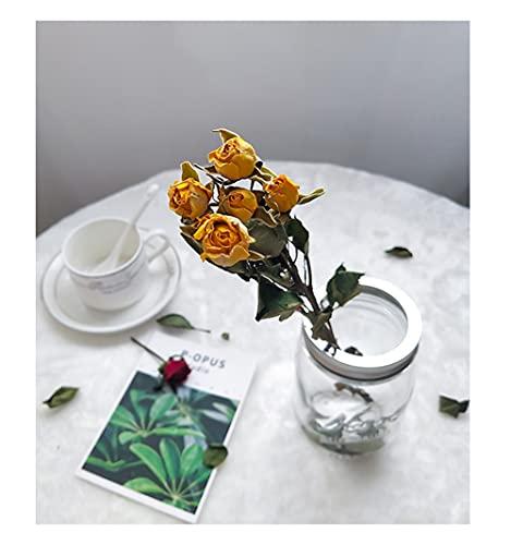 Flor De Rosa Seca Natural, Ramo De Flores De Rosas Secas De...