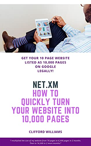 NET.XM: How To Increase Your Web Pages x1000 On Google Legally