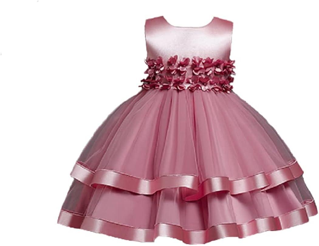little dragon pig Girl Long-awaited Princess Great interest Tutu Flower Dress A-Line Holiday