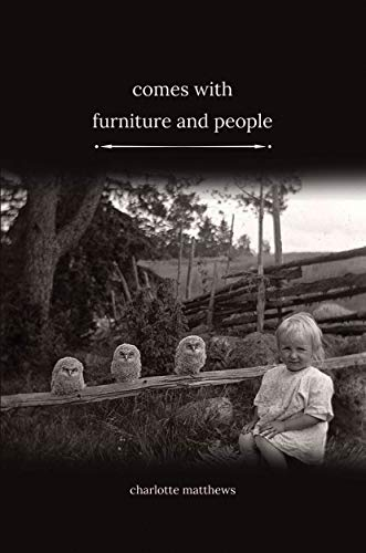 Comes With Furniture and People (English Edition)