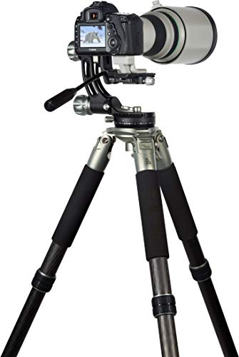 Rollei Lion Rock Gimbal – Carbon Stativ mit 30 kg Tragkraft, ideal für Astro – Vogel – und Sport-Fotografie,für Spiegelreflex- u. System-Kameras,11 lagiges Carbon mit Spikes und Gimbal-Stativkopf