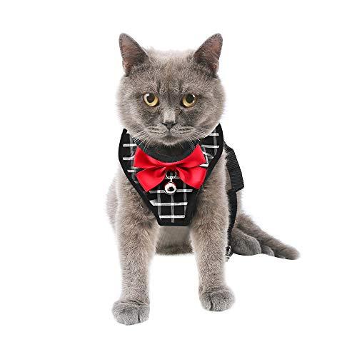 Katzengeschirr katzenleine Geschirr für Katzen Ausbruchsicher Welpengeschir, mit Leine Ultraleichtes Kitten Collar Coft und bequemes Brustgeschirr für Kätzchen und Kaninchen