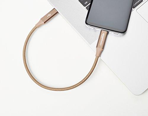 Amazon Basics - Verbindungskabel, USB Typ C auf USB Typ C, USB-3.1-Standard der 1. Generation, doppelt geflochtenes Nylon, 0,3 m, Gold