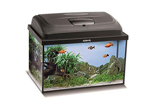 Aquael Aquarium Set Classic LT inkl. Abdeckung, Filter, Heizer COMFORTZONE Gold 25W, LED Beleuchtung (40x25x25 gewölbt)
