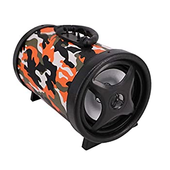 TORPOAD Portable Wireless Speaker Boombox Rechargeable Battery Surround Sound Digital Sound Amplifier USB/SD/FM Radio Home Hi-Fi Active Stereo Speaker System