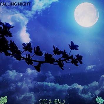 Falling Night (Radio Edit)