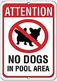 Modtory Warnschild No Dog in Pool Area