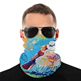 Smier Direct Mountain Chickadee Outdoor Magic Scarf Bandana Sport Balaclavas Facemask Headscarf Mask for Men Women